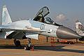 Sukhoi Su-35S Flanker-E 01 black (8583048598).jpg