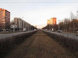 Светлановский проспект