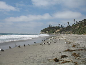 Swami's - The beach at Swami's, looking north towards the point. Encinitas, California, 2007