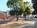 Tōgane central park.jpg