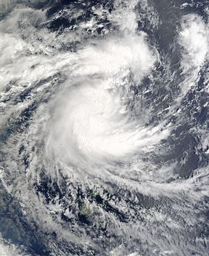 Cyclone Ami - Image: TC Ami 11 jan 2003 2210Z