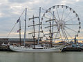 Tall Ship races Harlingen 2014 - Artemis.jpg