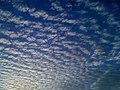 Tamarac, FL, USA - panoramio (3).jpg