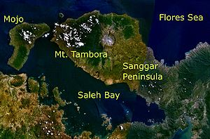 Mt. Tambora and its surroundings as seen from space