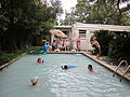 Taylor Party Pool 3 NOLA.jpg