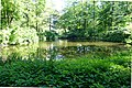 Teich am Klinikum Aachen 2.jpg