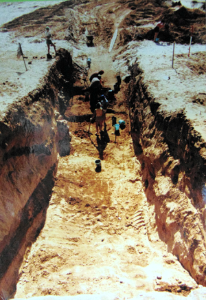 Tel Michal - Initial deep excavation extended to the edge of the tell to verify the extent of fortification levels, visible on left side of the trench as darker layers separated by sand