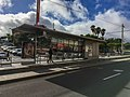 Tenerife 2018 100.jpg