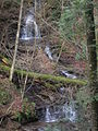Thanksgiving, Pine Creek Gorge 026.JPG