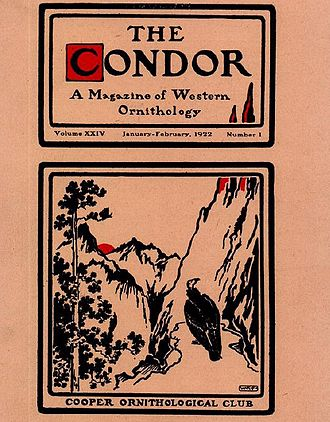 The Condor (journal) - Cover art of The Condor in 1922.