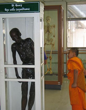 Siriraj Medical Museum - The mummified serial killer, named Si Quey, on display in the Forensic Museum.