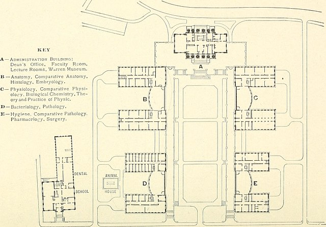 File:The Harvard medical school and its clinical opportunities (1916 ...