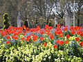 The Mall, London April 2006 037.jpg