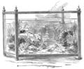 The Marine Aquarium (Calvert).png