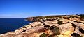 The Royal National Park Coast Track - panoramio (11).jpg