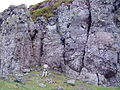 The Whangie - geograph.org.uk - 829970.jpg