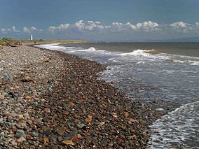 The beach at South Walney nature reserve - geograph.org.uk - 1453817.jpg