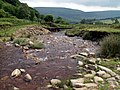 The end of Crowden Little Brook - geograph.org.uk - 469514.jpg