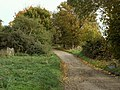 The lane that leads to Whatfield Hall - geograph.org.uk - 277155.jpg