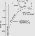 ThermoclineSeasonDepth.png