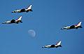 Thunderbirds in Italy 110611-F-KA253-037.jpg