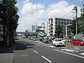 Tokyo Route 311 -10.jpg