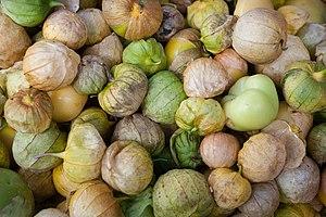 Tomatillos - Physalis philadelphica