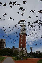 Torre Monumental Buenos Aires con Palomas