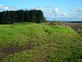 Track Near Beckhead - geograph.org.uk - 564807.jpg