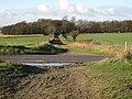 Track to Carlton Grange - geograph.org.uk - 1637292.jpg