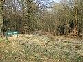 Trafalgar Avenue, Forest of Dean - geograph.org.uk - 1234651.jpg