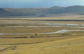 Mongolian-Manchurian grassland - Image: Tree on the Mongolian steppe (June 1997)