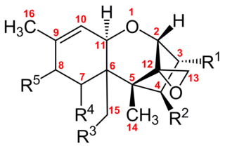 Trichothecene toxic compounds produced by produced by Fusaria, Stachybotrys, Trichoderma and other fungi, and some higher plants