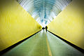 Tunnel (3251209204).jpg