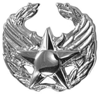 Air Force Commanders Insignia