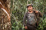 USAID Measuring Impact Conservation Enterprise Retrospective (Guatemala; Rainforest Alliance) (39592668374).jpg