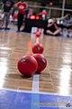 USA Dodgeballs lined up.jpg