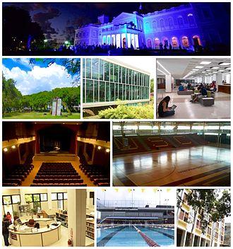 Universidad del Sagrado Corazón - Image: USC Collage