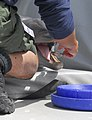 US Navy 070412-N-6652A-113 A marine mammal handler feeds a dolphin assigned to the U.S. Navy Marine Mammal Program during a presentation in Point Loma, Calif.jpg