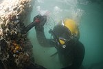 US Navy 100125-N-1134L-140 Navy Diver 1st Class John Neal, assigned to Mobile Diving and Salvage Unit (MDSU) 2, inspect a damaged pier.jpg
