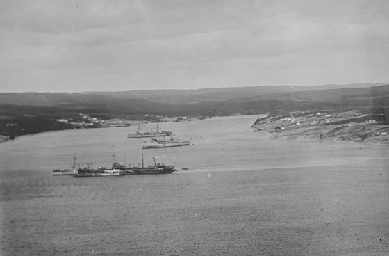 U.S. Navy ships in Trepassey Bay, May 1919. US Navy ships Trepassey Bay c1919.jpg