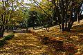 Umegayato Genryu Teien - panoramio.jpg