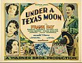 Under a Texas Moon poster.jpg