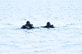 United States Navy SEALs 519.jpg
