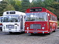 United bus 6080 (SHN 80L) & Ribble bus 338 (NCK 338J), 2008 Aire Valley Running Day (2).jpg