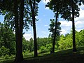 University of Tennessee Arboretum - hillside.JPG