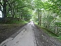Unthank Lane and Burrs Wood View - geograph.org.uk - 531166.jpg