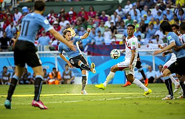 Uruguay - Costa Rica FIFA World Cup 2014 (3).jpg