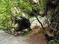 V doline Selenec - panoramio.jpg