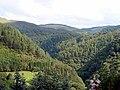 Vale of Rheidol - geograph.org.uk - 556107.jpg
